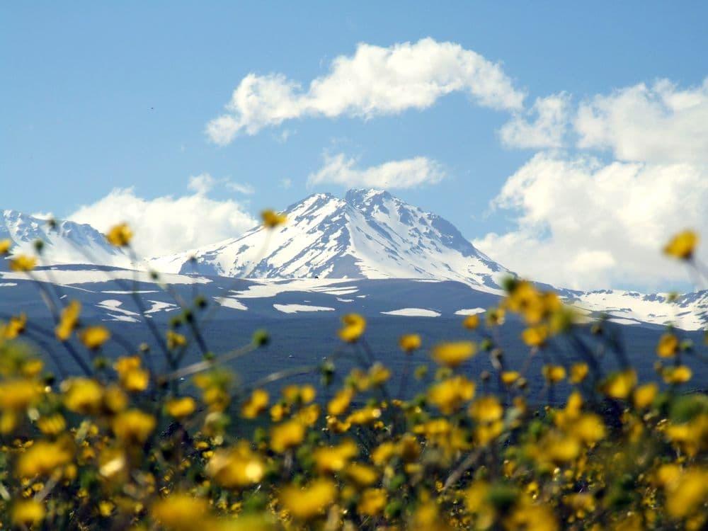 Поход на гору Арагац + Амберд | Bustourma