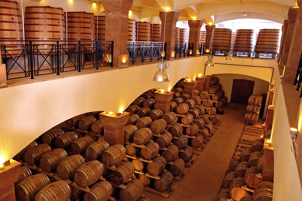 Кармравор+винный завод+мастер-класс | Bustourma